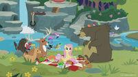 Season 8 promo image - Fluttershy having a sanctuary picnic