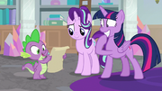 Spike reading Shining Armor's invitation S9E4