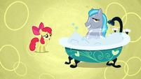 Too clean stallion S02E17