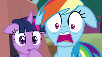 Twilight and Rainbow Dash shocked S8E20