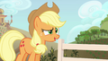 "Applejack ""are y'all thinkin' what I'm thinkin'"" S4E09.png"