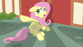 """Fluttershy """"just leave me alone!"""" S7E14.png"""