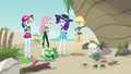 Fluttershy worried about the baby turtles EGDS14.png