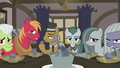 Igneous and Cloudy staring at Applejack S5E20.png