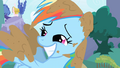 Muddy Rainbow Dash smiles S1E01.png