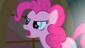 Pinkie Pie 'No, no, no, no!' S1E25.png