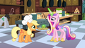 Princess Cadance checking on the catering S02E25.png