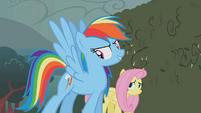 Rainbow Dash -these babies- S02E01