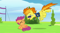 Spitfire yelling in Scootaloo's face S8E20