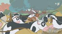Winona riding a cow S1E04