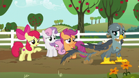 Apple Bloom --you don't need to apologize-- S6E19