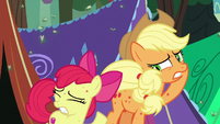 Applejack and Apple Bloom covered in Fly-der bites S7E16