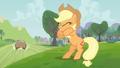 Applejack cute eagerness S3E8.png