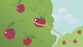 Applejack lassoes an apple S1E06.png