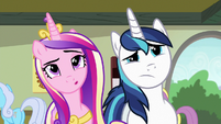 Cadance and Shining Armor looking at art S7E3