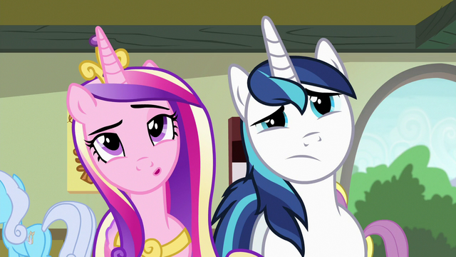File:Cadance and Shining Armor looking at art S7E3.png