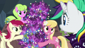 Flower trio presents Rarity's lavender flowers S7E19.png