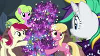 Flower trio presents Rarity's lavender flowers S7E19