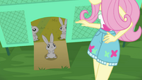 Fluttershy looks down at Mr. Bouncy EGSB