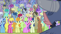 Ponies listening to Iron Will S02E19.png
