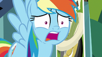 "Rainbow Dash ""say whaaaaaaat?!"" S9E21"