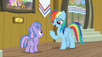 "Rainbow Dash ""you don't say"" S9E6"