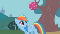 Rainbow Dash bouncing a ball S1E07.png