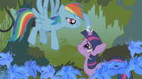 Rainbow Dash touch Twi's horn S1E09