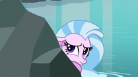 Silverstream hiding behind the rocks S8E22
