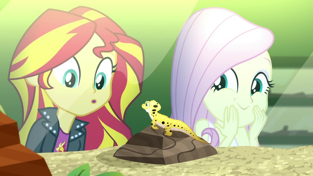 File:Sunset Shimmer meets a leopard gecko SS7.png