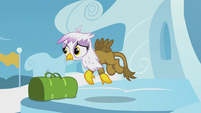 Young Gilda wants to fly with the Pegasi S5E8