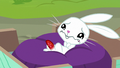 Angel whimpering in Fluttershy's wagon S7E5.png