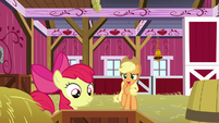"Applejack ""I know you're excited"" S9E10"