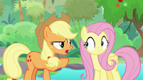 "Applejack ""when do we ever argue?"" S8E23"