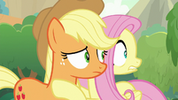 Applejack and Fluttershy look around more S8E23