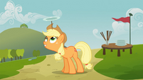 Applejack balancing plate on head S03E08