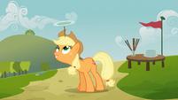 Applejack balancing plate on head S03E08