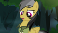 Daring Do standing over Rainbow S4E04.png