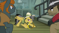 Daring Do with Ring of Destiny S4E04.png