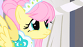 Fluttershy wide eyes S1E20.png