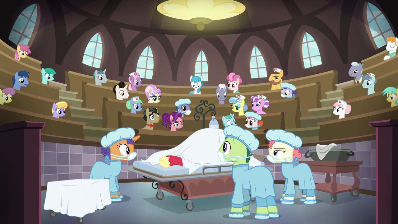 Nurse Ponies My Little Pony Friendship Is Magic Wiki