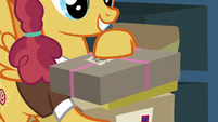 Mailpony holding Big Mac's package S8E10