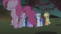 Pinkie Pie bouncing around her friends S1E02