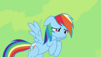 Rainbow Dash -I just need a sec- S4E04
