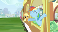 Rainbow Dash at the window S2E25.png