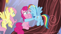 Rainbow Dash consoling Pinkie Pie S5E19