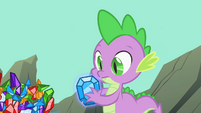 Spike gift from Rarity S01E19
