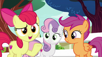 "Apple Bloom ""you can count on us!"" S8E12"