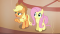 """Applejack """"do either of you even know"""" S6E20.png"""