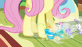 Breezies pleading to Fluttershy S4E16.png